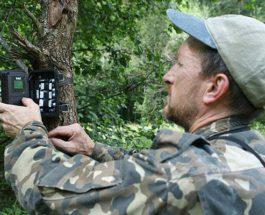 Сергей Гащак,Чернобыльская зона,медведи,