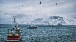 арктика пролив