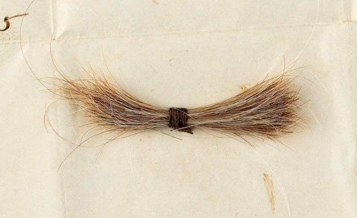 линкольн прядь волос