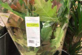 листья,осенние листья,букеты,