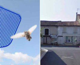 муха,дом,мужчина,