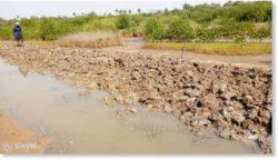 50 000 пострадавших от наводнения в Канкане, Гвинея