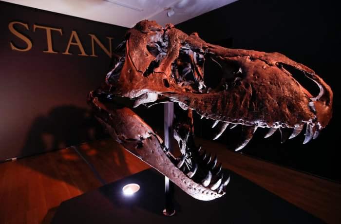 тиранозавр,Christie's,