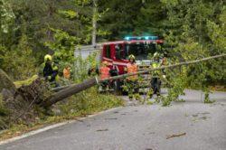 Более 80 000 семей остались без электричества в Финляндии из-за сильного шторма