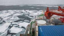Впервые в истории Арктика еще не начала замерзать, предупреждают ученые.