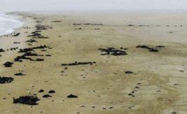 Намибия,пляж,Катастрофа,