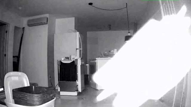 призрак,насекомое,камера,