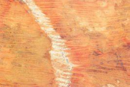 Роберт Богукис - американский пожарный. В 1999 году он был в отпуске в Австралии. Тут что-то случилось с его разумом и он поехал на велосипеде в пустыню, где, конечно, заблудился. Кстати, Богукис был с Аляски, а температура в Великой песчаной пустыне и в июле часто поднимается выше 30-градусного деления.