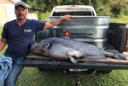Мужское счастье: рыбак поймал сома весом более 50 кг
