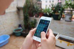Apple стремительно развивает собственную поисковую систему