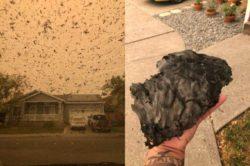 Это хуже, чем извержение вулкана! Огромные куски пепла падают с неба над Санта-Розой, штат Калифорния, когда лесной пожар атакует местность