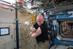 Ученые могут знать, почему у космонавтов возникают проблемы со здоровьем в космосе