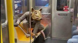 мужчина, метро, костюм крысы,