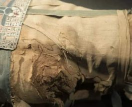 мумия, Египет,