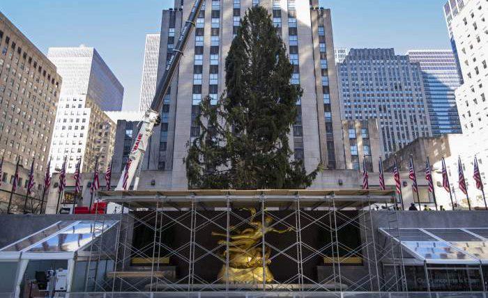 рождественская елка,Рокфеллер-центр,Манхэттен,