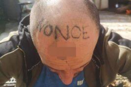 тату, татуировка, на голове,
