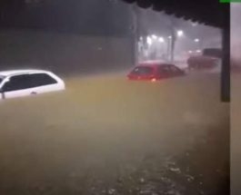 Бразилия, наводнение, дожди,