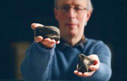 Мог ли здесь быть настоящий парк юрского периода? Окаменелости динозавров впервые обнаружены в Ирландии (видео)