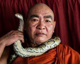 Монах, змеи, буддизм,