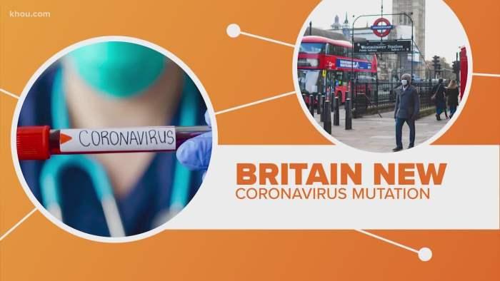 коронавирус, мутация,