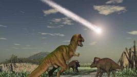 массовые вымирания, цикл, виды, вымирание,