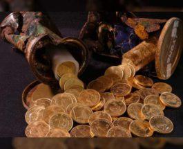 монеты, сад, клад,