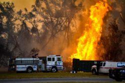 В Южной Калифорнии полыхают лесные пожары (ВИДЕО)
