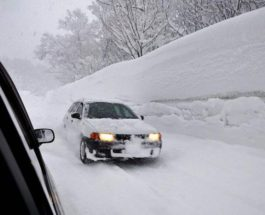 снег, снегопад, япония,