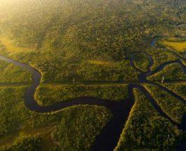 Амазонка, легкие земли,