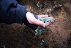 На венгерской ферме найдено 7000 серебряных и золотых монет