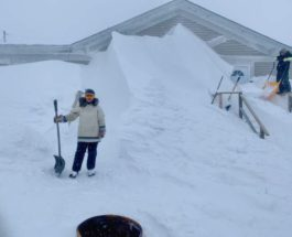 Канада, снег, Лабрадор,