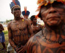 Каяпо, племя, Бразилия, covid-19,