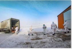 Монголия переживает «одну из самых суровых зим в истории»