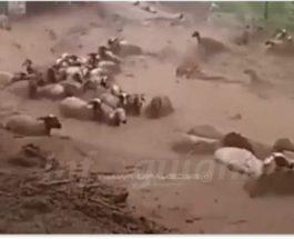 наводнение марокко