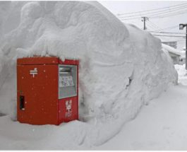 Япония, метель, снег, снегопад, погода,