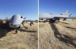 Дрон армии США MQ-1C совершил аварийную посадку в Нигере