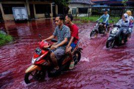 Индонезия, подтопление, красная вода, затопление,