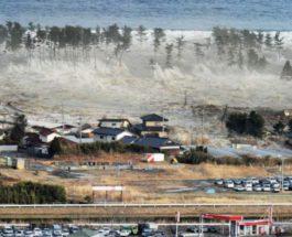 Новая Зеландия, цунами,