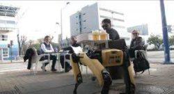 Бары в Севилье уже используют роботов для подачи еды и напитков