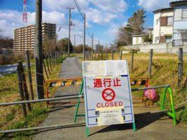 Фукусима, землетрясение, Япония,