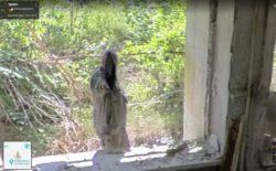 В заброшенном здании в Чернобыле заметили зловещую фигуру в плаще (ВИДЕО)