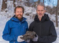 В Швеции нашли недавно упавший метеорит