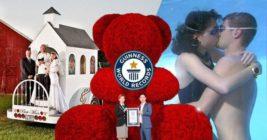 мировой рекорд, медведь, розы,