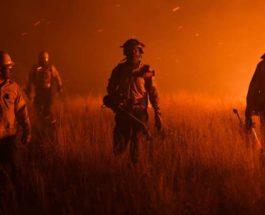 Аргентина, пожары, лесные пожары,