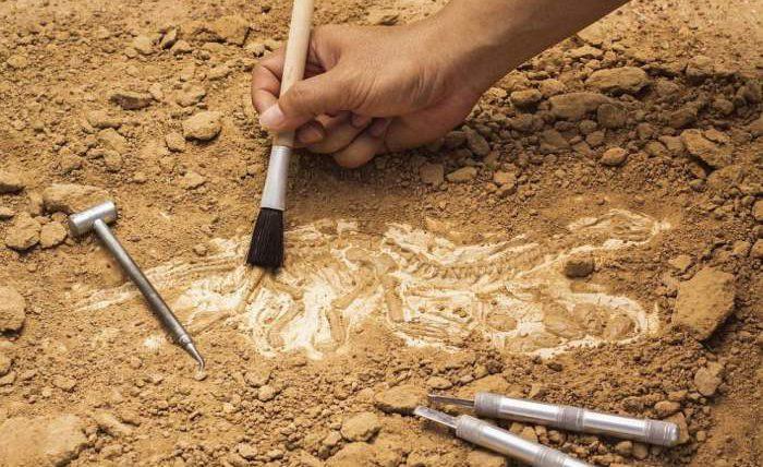 Израиль, статуэтка, археология,