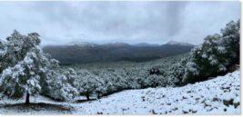Майорка, снег,