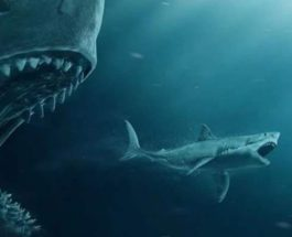 Мегалодоны, акулы, древние акулы,