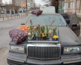 Украина, лимузин, картошка, Черновцы,