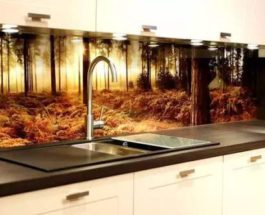 стеклянный фартук, кухня, стеклянная панель,