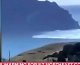 цунами, Новая Зеландия,